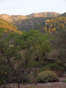 View from our room at the Writing Retreat in Mallorca w